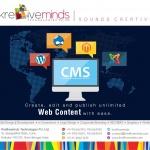 Content Management System Service